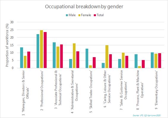 Occupation breakdown by gender