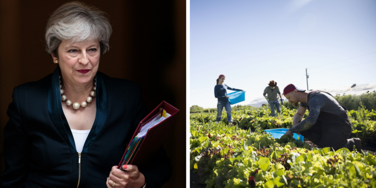 Theresa May and outdoor workers